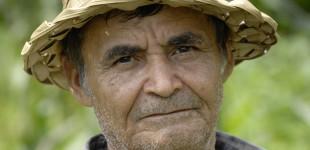 Brazil: Remembering Dorothy
